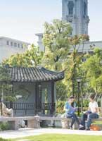 Three reasons why international students go to China