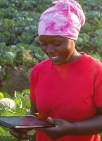 Universities have a key role to play in agricultural innovation in Africa